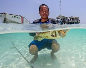 Palau -  Tubbataha - photo credit Tet Lara